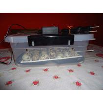 Chocadeira Semi Automática De 30 Ovos De Codorna