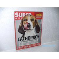 Revista Super Interessante Edição 263 Ano 2009 Cachorros
