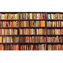Coleção Zibia Gasparetto - 10 Livros - Promoção Revenda !!!