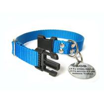 Kit Identificação Para Cães - Coleira E Placa Personalizada