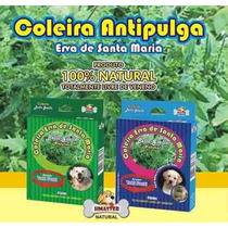Coleira Anti Pulgas E Carrapatos - Natural - Porte Pequeno