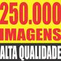 Imagens E Vetores - Estampas Gráficas Adesivos Azulejos Cdr