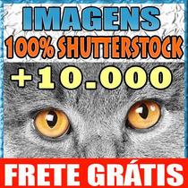 Imagens Alta Resolução 100% Shutterstock 300dpi Corel Pixels