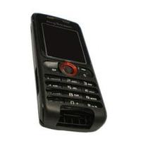 Carcaça Sony Ericsson W 200 Generica