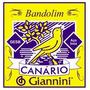 Encordoamento Para Bandolim Giannini Gesb C/chinilha, 00380