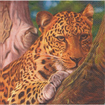 Kit C/ 20 Guardanapos Decoupage Onça Zoo Tec