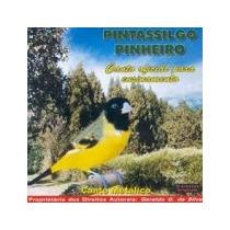 Canto Pintassilgo Pinheirinho Cd Original Frete Gratis
