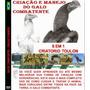 Dvd Criação E Manejo De Galos Indio Shamo, Bankiva Treino