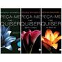 Trilogia Completa Peça-me O Que Quiser(e-books Livro Digital