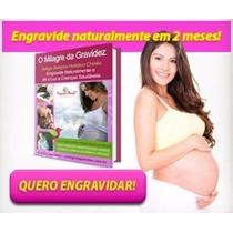 E-book Livro Digital O Milagre Da Gravidez + Brinde (cod 74)