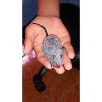 Rato De Fricção Sustos Brincadeiras Super Veloz No Leilão