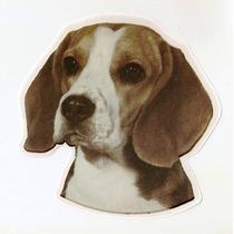 Adesivo Cão Beagle. Alta Resolução, Frete Grátis, Promoção