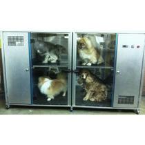 Máquina De Secar Cães Secadora De Animais Saara Turbo