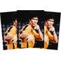Bruce Lee Sleeves - Bruce Lee Sleeves Max Protection