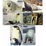 Cartão Telefonico Série Animais Polares 6 Cts Sp