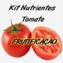 Kit Nutrientes Hidroponia 1000 Litros Solução Para Tomates
