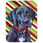 Filhote De Cachorro Preto Great Dane Candy Cane Feriado Do N
