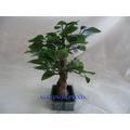 Vaso Bonsai Verde Planta Artificial Em Seda