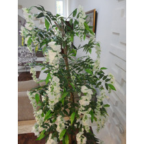 Planta Artificial-arvore Wisteria Branca 1,60mt Altura