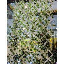 Muro Inglês Decoração Painel Folha Artificial Folhagem 2mx70