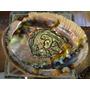 Concha Abalone