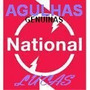 Agulha National / Technics Toca Discos 3x1 9000 S