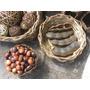 50 Sementes De Olho De Boi Macunã - Promoção Aproveite
