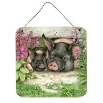 Porcos Sob A Cerca De Debbie Cozinhe Parede Ou Porta De Susp