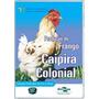 Produção De Frango Caipira Colonial Em Dvd - Frete Grátis!!!