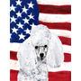 Branco Poodle Toy Com Bandeira Americana Da Bandeira Dos Eua