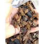 Substrato Bio Orquídea = Bioadubo + Cascas+fibras+carvão 5 L