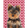 Corações Do Amor E Filhote De Cachorro Yorkie Dia / Yorksh