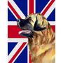 Leonberger Com O Inglês Union Jack Bandeira Britânica Band