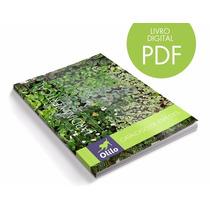 Catálogo De Plantas Para Painel Jardim Vertical Suspenso
