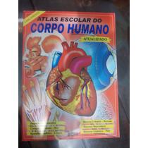 Atlas Escolar Do Corpo Humanos Atualizado