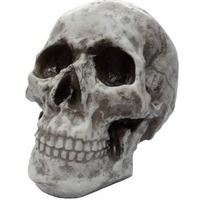 Cranio Caveira Rock -tam. Real Pronta Entrega Frete + Barato
