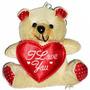 Urso Segurando Coração Com A Palavra I Love You E Ventosa