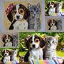 Eternize Seu Pet!!! Pinturas Realistas De Animais Em Tecido
