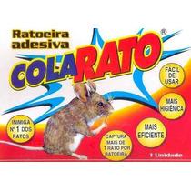 Ratoeira Adesiva Cola Rato Caixa C/ 20 Unidades