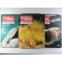 Animais Do Mar 1 - 2 E 3 - Enciclopédia Da Vida Selvagem