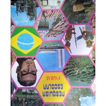 Pesquisa Escolar 1º Grau 4 Volumes - Zuleika De Siqueira Rib