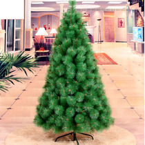 Arvore De Natal Pinheiro Luxo 2,10m C/704 Galhos