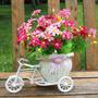Enfeite Bicicleta Triciclo Branco Importado Pronta Entrega