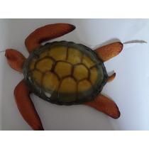 Tartaruga Em Fibra De Vidro Com Pintura Automotiva.