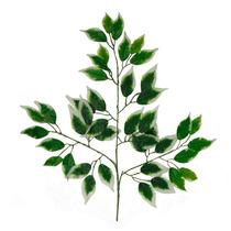Haste Folha Ficus Verde E Branco 57 Cm - Flores Artificiais