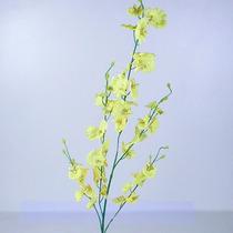 Haste Chuva De Ouro Cor Sortida 100 Cm - Flores Artificiais