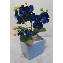 Arranjo De Mini Orquídea Azul Vaso Quadrado Azul