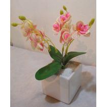 Arranjo De Mini Orquídea Rosa Vaso Quadrado Branco