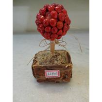 #12809 - Enfeite Árvore Sementes Quebra Olho Gordo!!!