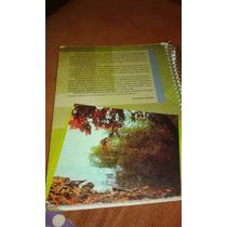 Livro De Ciências 6 Ano Editora Sucesso